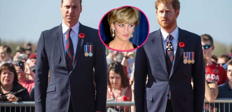 Prinz Williams Kampf um Diana-Interview: Hilft Harry nicht?