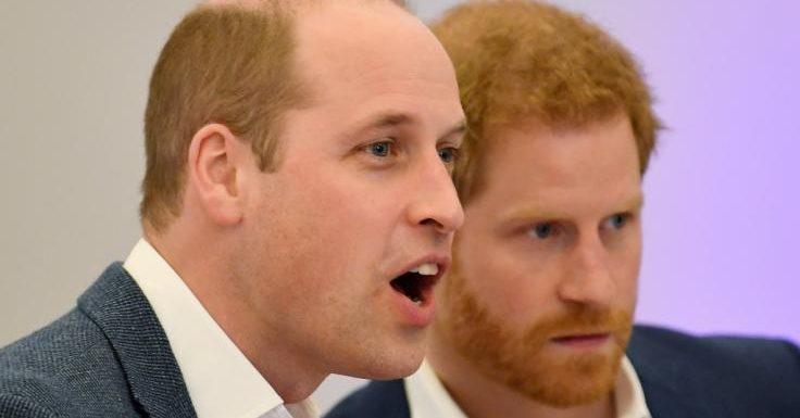 Prinz Harry macht Schluss: Prinz William ist fassungslos! DAS hat die Queen nicht verdient