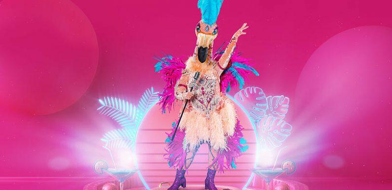 'The Masked Singer' 2021: Wer ist der Flamingo?