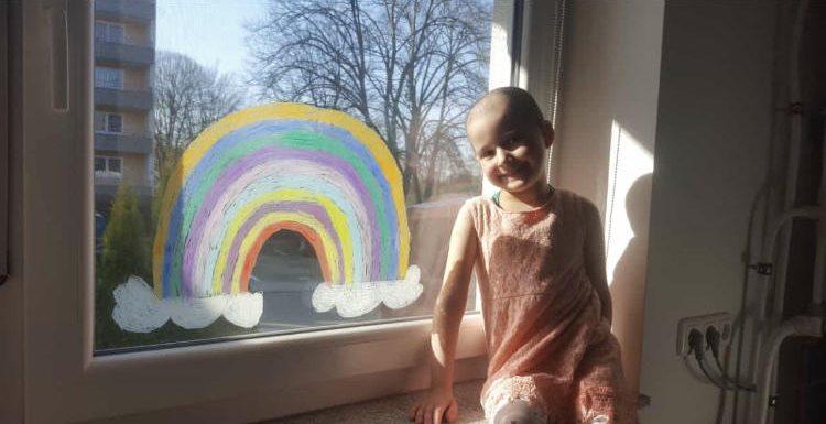 Sie kämpft seit zwei Jahren gegen Leukämie: Sophia (6) braucht dringend einen Stammzellspender!