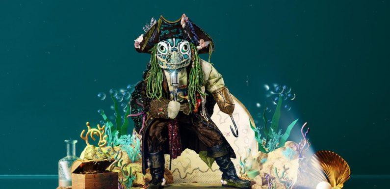 """""""The Masked Singer"""": Welcher Promi ist die Schildkröte? Indizien und Hinweise zum Kostüm"""
