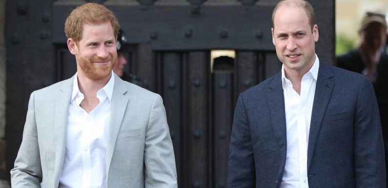 Prinz William findet Prinz Harrys Statement respektlos
