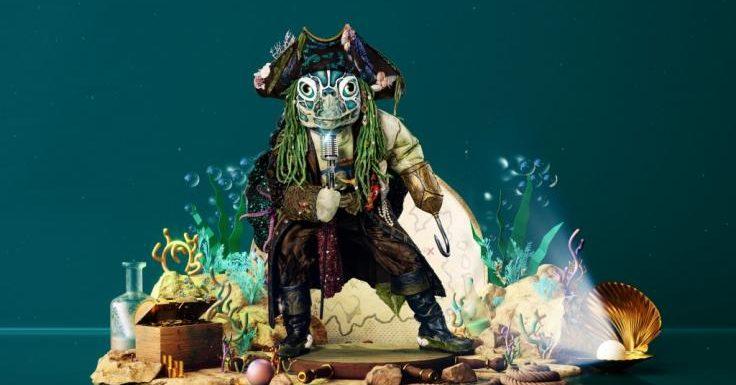 """""""The Masked Singer"""" 2021: Welcher Promi versteckt sich im Schildkröten-Kostüm?"""