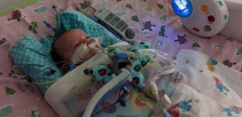 Mutter reagiert richtig: Baby (7 Wochen) überlebt Herzinfarkt