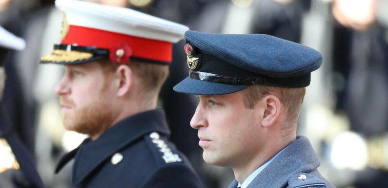 Brüder zerstritten: So sollen sich Harry & William bei Prinz Philips Trauerfeier begegnen