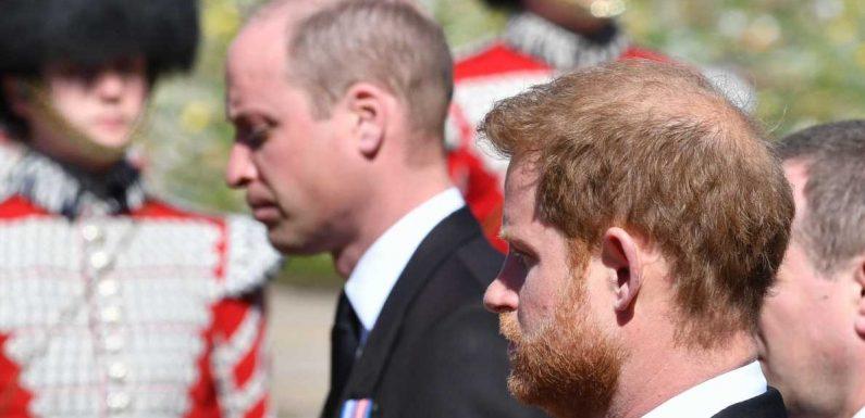 Harry & William versöhnt? DAS verrät ihre Körpersprache bei Prinz Philips Trauerfeier