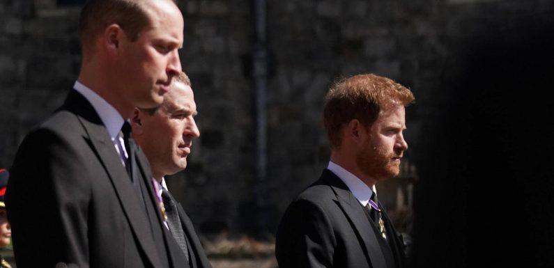 Lippenleser verrät: Das sagte Harry zu William nach der Trauerfeier