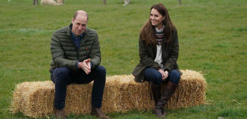 Prinz William und Herzogin Kate: Schafe streicheln und Traktor fahren vor ihrem großen Tag