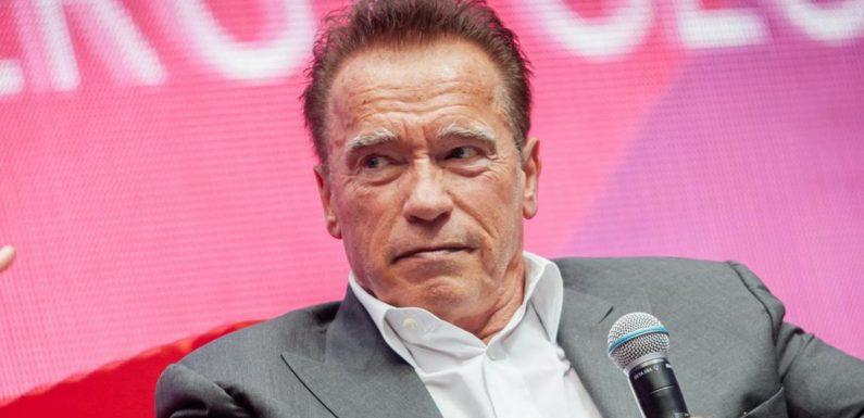 Schwarzenegger begrüßt Cameron