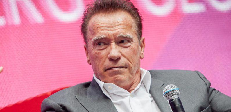 """Schwarzenegger trifft sich mit Cameron bei """"Arnold's Stammtisch"""""""