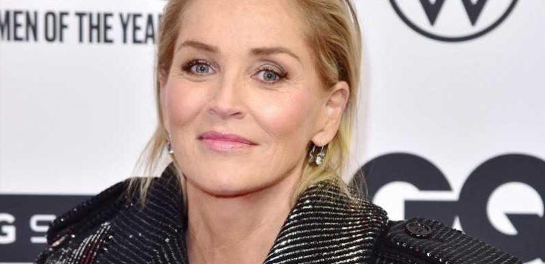 """Fehlgeburten: Sharon Stone hat mehrere Kinder verloren – """"Vernichtende Erfahrung"""""""
