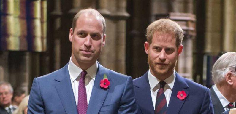 """Prinz William soll Kontakt zu Bruder Harry """"unangenehm"""" sein"""