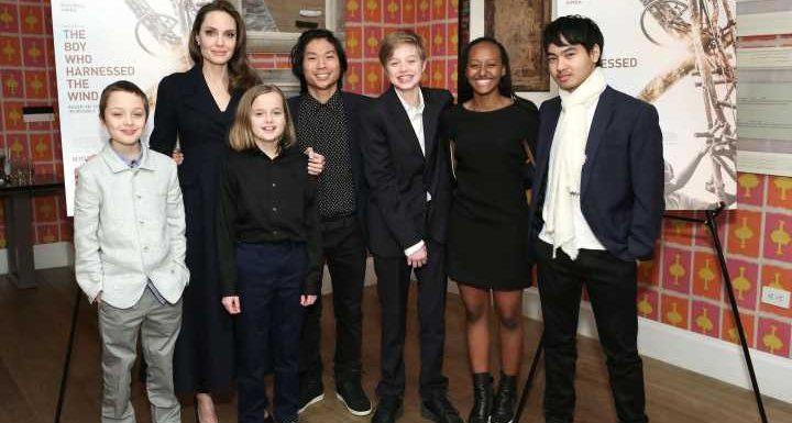 Angelina Jolie: Wurde sie im Scheidungsverfahren unfair behandelt?