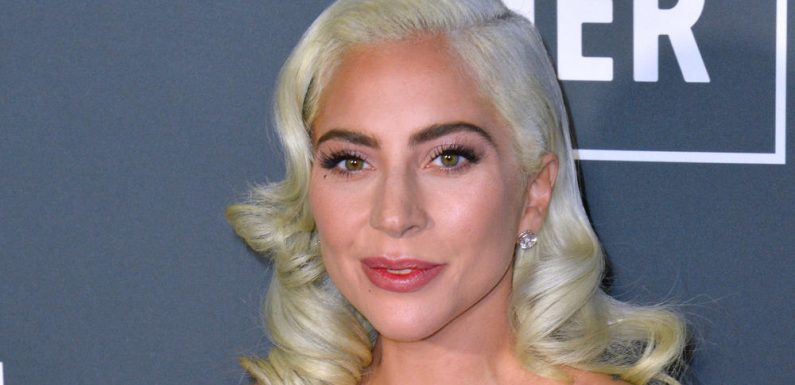 Nach Überfall: Lady Gagas Hundesitter arbeitet wieder