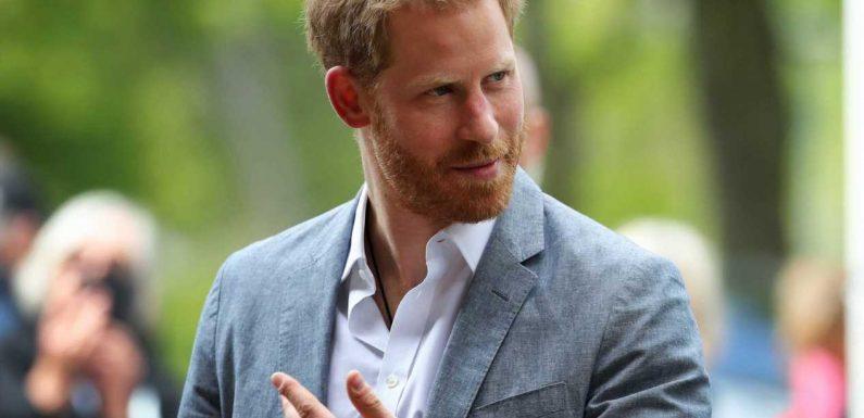 """Prinz Harry über sein Leben als Royal: """"Wie ein Mix aus Truman-Show und Zoo"""""""