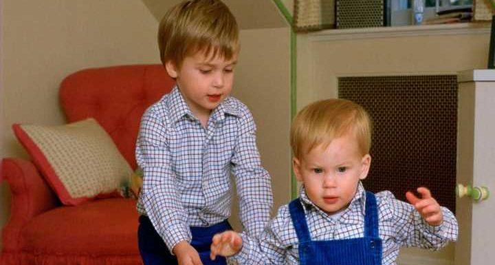Prinz William + Prinz Harry. Die schönsten Momente der Brüder