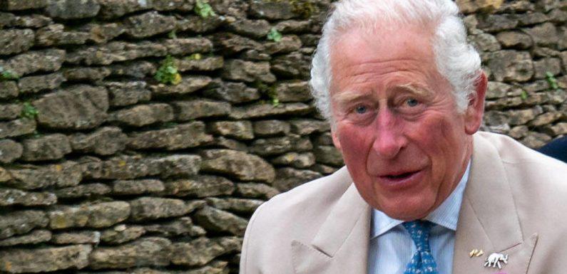Prinz Charles will, dass Archie keinen Prinzen-Titel bekommt