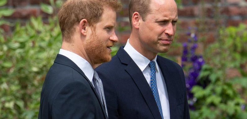Beziehung von Harry und William weiter sehr angespannt