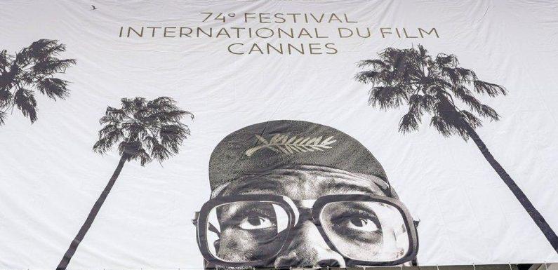 Cannes: Alles Wissenswerte zum Filmfestival