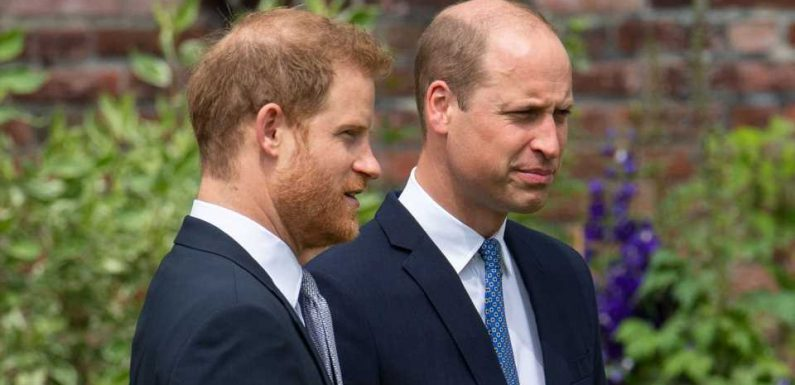 Darum verfassten William und Harry die Diana-Rede gemeinsam