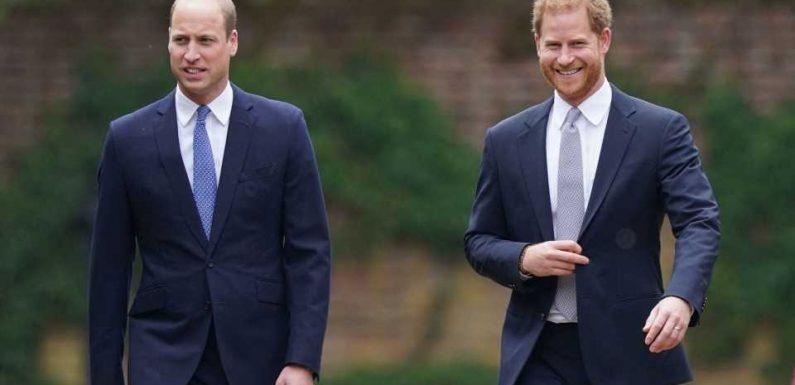 Experte ist sicher: William und Harry versöhnen sich jetzt!
