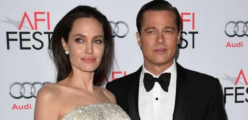 Kein Bock auf Brad: Angelina Jolie will Weingut loswerden
