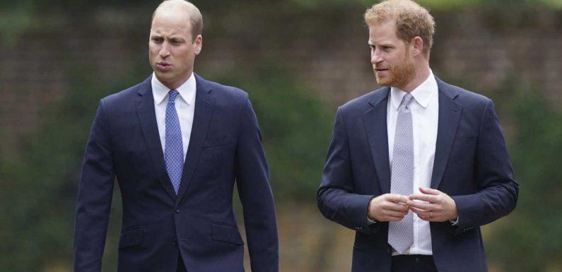 Prinz Williams Personal: Hetzjagd gegen Harry?