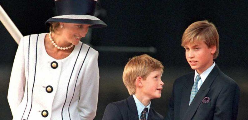 Bringt Prinzessin Dianas Todestag William und Harry wieder zusammen?