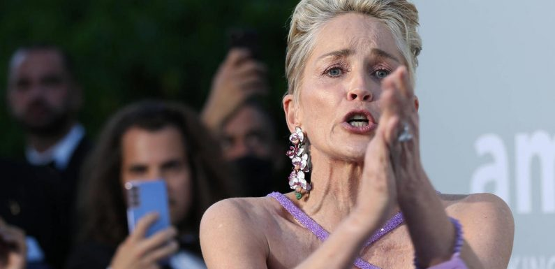 Sharon Stone trauert um ihren elf Monate alten Neffen
