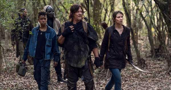 """Start der finalen Staffel: Das geschah bisher bei """"The Walking Dead"""""""