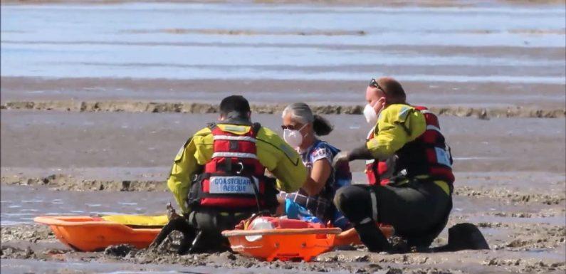 Was für ein Schlam(m)assel! Frau steckt vor Küste im Watt fest – und muss gerettet werden