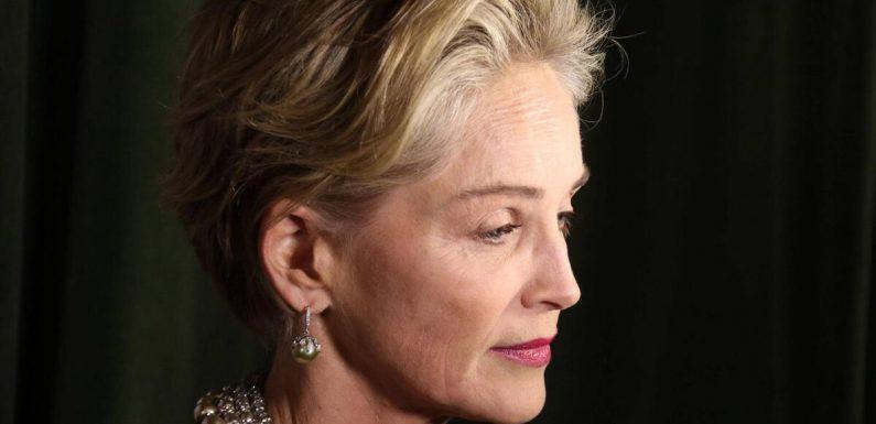 """""""Totales Organversagen"""": Neffe von Sharon Stone stirbt mit elf Monaten"""