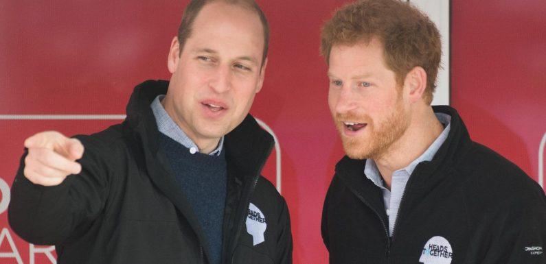 Prinz William + Prinz Harry: Bringt dieser Anlass sie jetzt wieder näher zusammen?