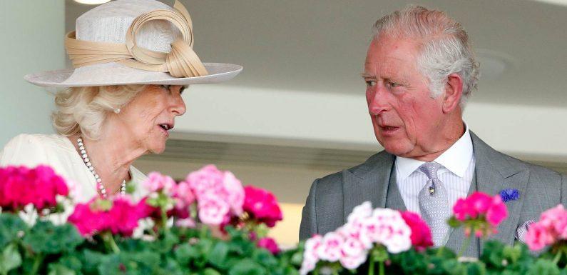 Prinz Charles: Scheidung von Camilla!   InTouch